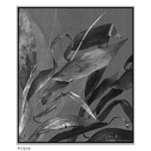 Opera di Silvia Boldrini -Pittura digitale