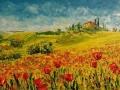 Campi d'estate -Massimo La Volpe